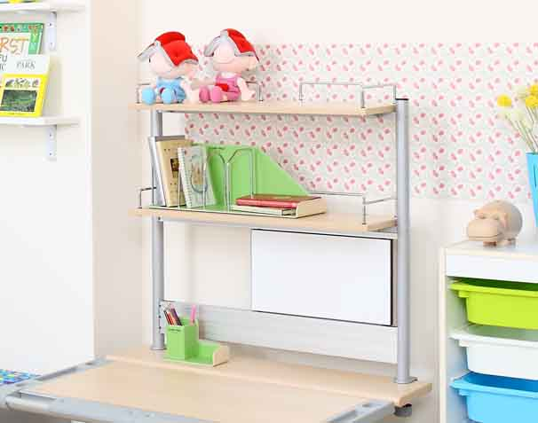 Double Layer & Multi-Function Aluminum Bookshelf